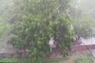 ભૂજમાં મેઘરાજાની મહેર, એક જ રાતમાં 5 ઈંચ વરસાદ ખાબક્યો
