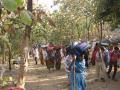 જૂનાગઢ:  લીલી પરિક્રમાનો પ્રારંભ, મધરાતે દોઢ લાખ યાત્રાળુઓ રવાના